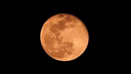 Extreme zoom photo of redish full moon as seen in deep darkness Fotoväggar