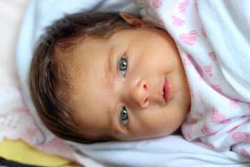 recém nascido no dia a dia