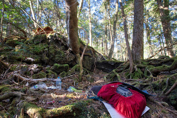 Aokihagara, Japan - December 16, 2016: Scattered people objects in Aokigahara suicide forest in Tokyo, Japan