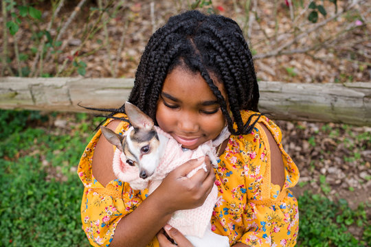High angle view of smiling girl carrying cute Chihuahua while standing in park