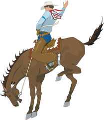 Bucking Bronco Vector Illustration