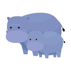 african hippos family wild characters