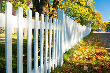 Aluminium Prints Autumn Beautiful colorful autumn scene with white fence and fall colors in Finland.