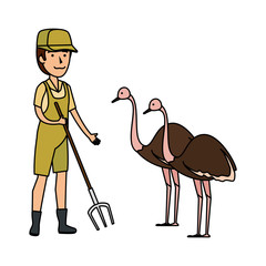 man worker of zoo with ostrich