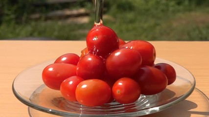 Fototapete - Pouring fresh water to a pile of Grape Tomatoes in a glass plate in Slow Motion