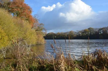 Erdre river, Nantes, France, Autumm