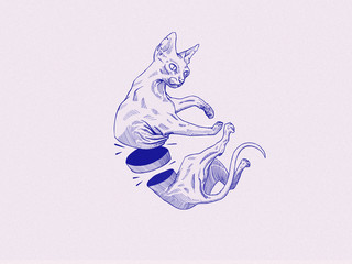 Sphinx-Illustration