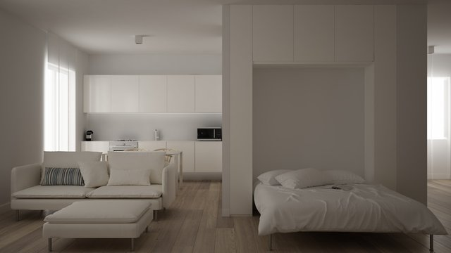 Small apartment, one-room with parquet floor, kitchen with dining table, Murphy bed, living room minimalist style, modern architecture interior design concept