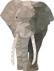 słoń low poly