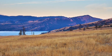 View from the Catherine Creek hiking trail in the Columbia River Gorge National Scenic Area near Lyle, Washington