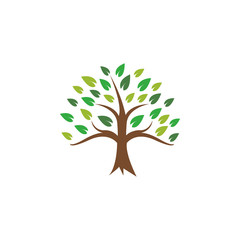 Tree icon design template vector illustration