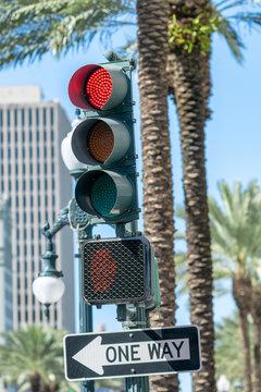 One Way Street sign and Traffic Lightsin New Orleans on Mardi Gras