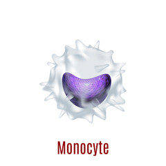 Isolated Monocyte Cell in Realistic Style