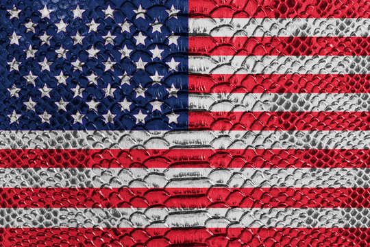 US flag on reptile skin
