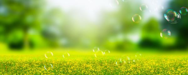 seifenblasen in idyllischer natur Fototapete