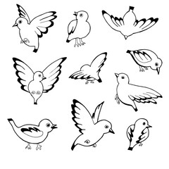 Vector hand drawn sketch of birds isolated on white background