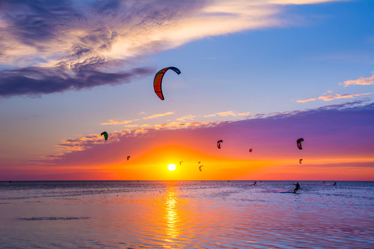 Kite-surfing against a beautiful sunset. Many silhouettes of kites in the sky. Holidays on nature. Artistic picture. Beauty world.