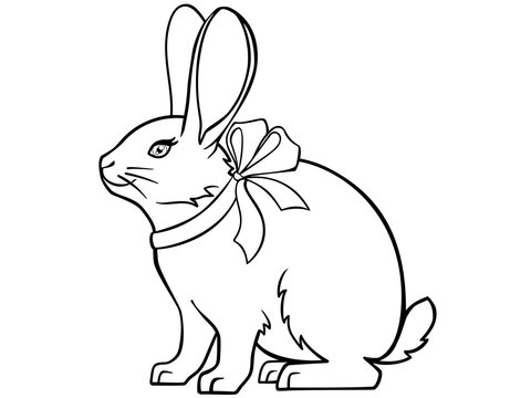 Cute rabbit with a ribbon around his neck and big ears. Funny Easter Bunny is sitting. Picture for coloring. Outline.