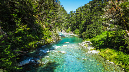 Day hike on the Routeburn Track near Queenstown
