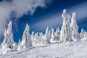 Beautiful scenery of the snowy winter landscape. View from Kubinska hola mountain in Slovakia, Europe.