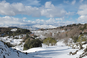 Wall Mural - Winter Landscape Sicilian Hinterland