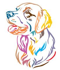 Colorful decorative portrait of Dog Golden Retriever vector illustration