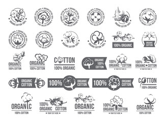Natural organic cotton, pure cotton vector labels set. Hand drawn, typographic style icons or badges, stickers, signs. Isolated white background