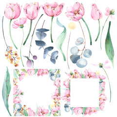 Set of hand painted floral watercolor illustrations and botanical frames with tulips, eucalyptus, wild flowers, brunches ans leaves