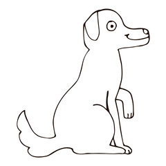 Cartoon doodle linear sitting dog isolated on white background. Vector illustration.