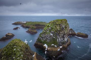Nature scene near Arnastapi cliffs on Snaefellsnes peninsula at west Iceland