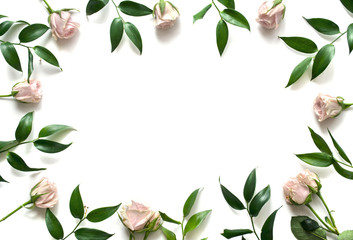 Delicate frame of pink roses and leaves on a white background with space for text. Floral background. Top view. Copy space. Mock-up