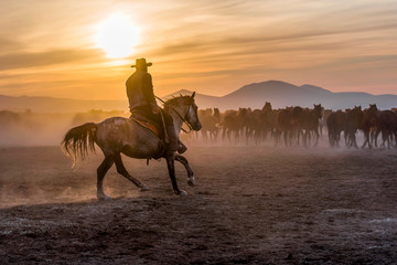 The cowboy who tamed horses at sunset