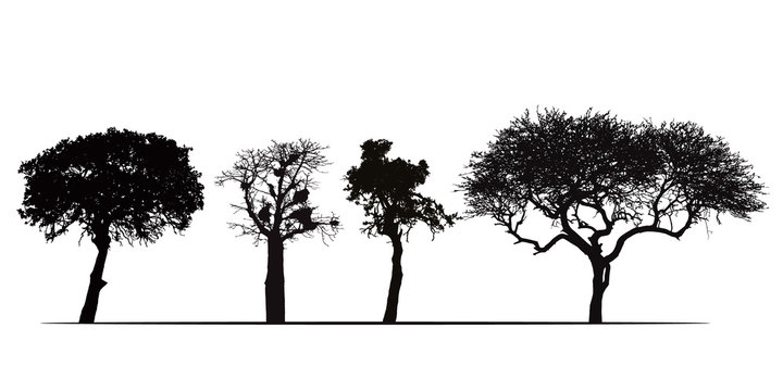 Set of silhouettes of African trees, isolated on white background, vector