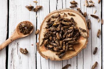 Fototapeta edible seasoned fried crickets obraz