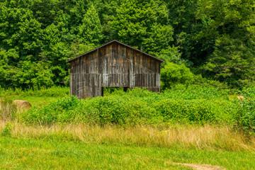 North Carolina Barn 1
