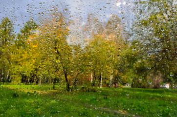 Bright autumn blurred landscape after rain through  wet window glass