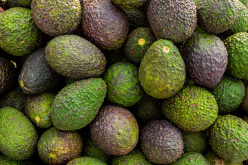 Fresh organic avocado at farmer's market - Image