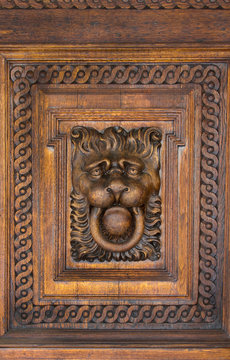 Wood Lion Face