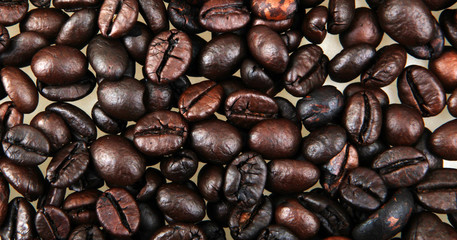 Wall Mural - Coffee Beans Background
