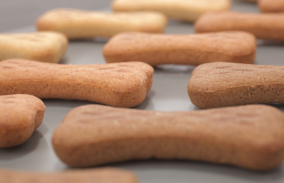 Snack food for dogs biscuits production line shaped as bone