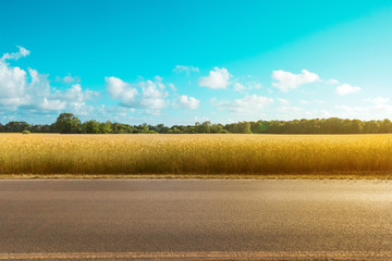 Poster Turkoois empty country road with field and rural landscape background on a sunny day -