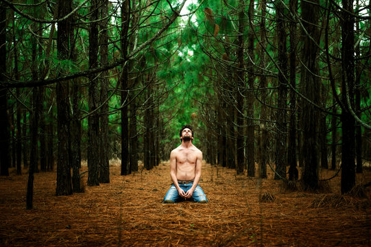 Young shirtless man in field of pine trees