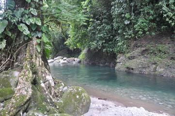 Rio Blanco Costa Rica