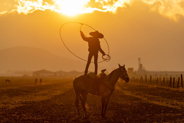 A Young Mexican Charro (Cowboy) Rounds Up A Herd of Horses Running Through The Field On A Mexican Ranch At Sunrise Wall mural