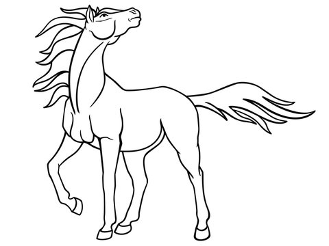 Graceful mare with a long mane. Picture with a proud horse for coloring. Fantastic stallion. Linear picture. Outline.