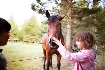 Children stroking horse in pasture