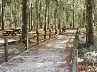 A fenced trail surrounded by trees and a picnic area