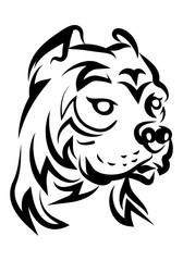 illustration of hideous pitbull dog tattoo