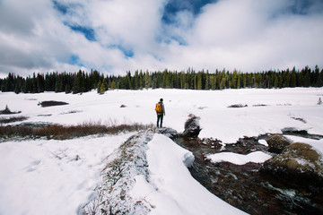 Young man standing and looking at winter landscape
