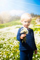 Cute Little Boy Is Holding A Bouquet Of Daisy Flower